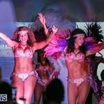 Bermuda Heroes Weekend Launch, November 20 2015-34