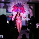 Bermuda Heroes Weekend Launch, November 20 2015-39