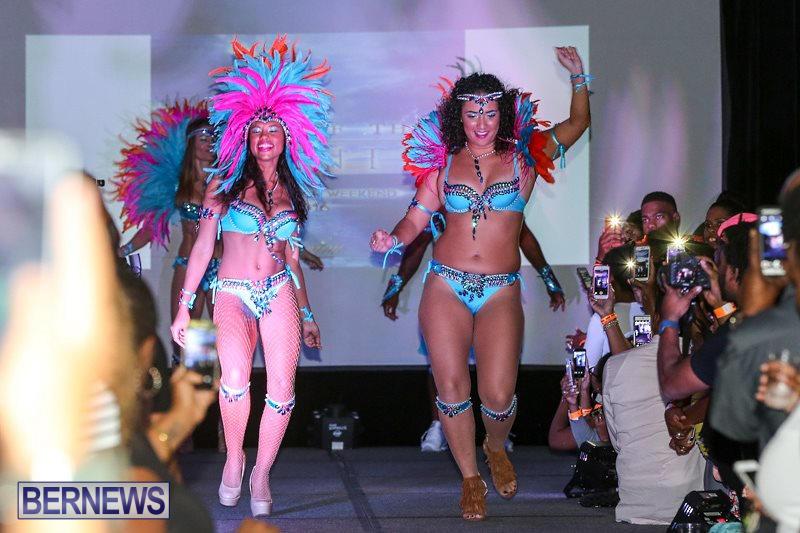 Bermuda-Heroes-Weekend-Launch-November-20-2015-41
