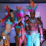 Bermuda Heroes Weekend Launch, November 20 2015-48