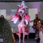 Bermuda Heroes Weekend Launch, November 20 2015-49