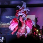 Bermuda Heroes Weekend Launch, November 20 2015-51