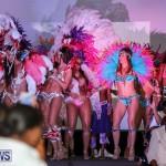 Bermuda Heroes Weekend Launch, November 20 2015-55