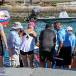 Bermuda Pilot Gig Club, November 7 2015-15
