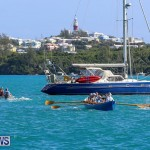 Bermuda Pilot Gig Club, November 7 2015-32