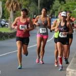 Bermuda Road Running Nov 2015 (7)