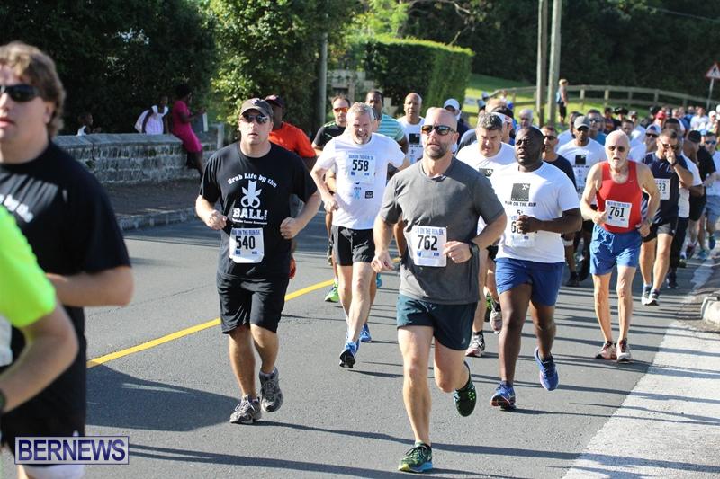 Bermuda-Running-Nov-11-2015-13