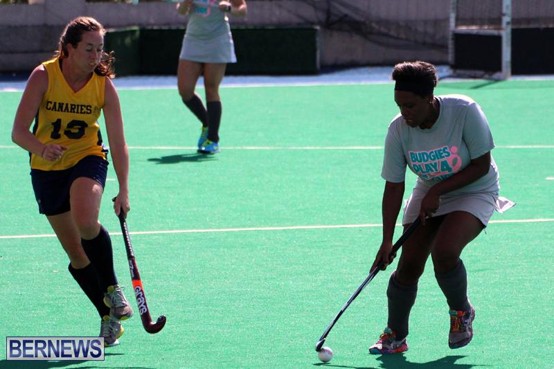 Budgies-Canaries-Hockey-Bermuda-November-2015-1