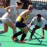 Budgies - Canaries Hockey Bermuda November 2015 (17)