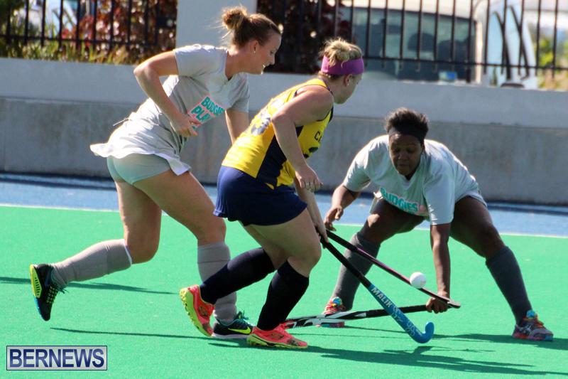 Budgies-Canaries-Hockey-Bermuda-November-2015-17
