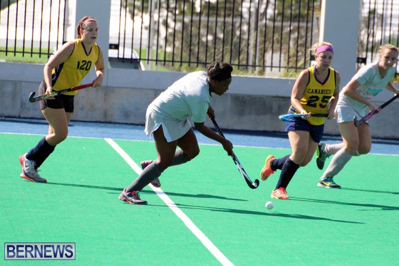 Budgies-Canaries-Hockey-Bermuda-November-2015-18