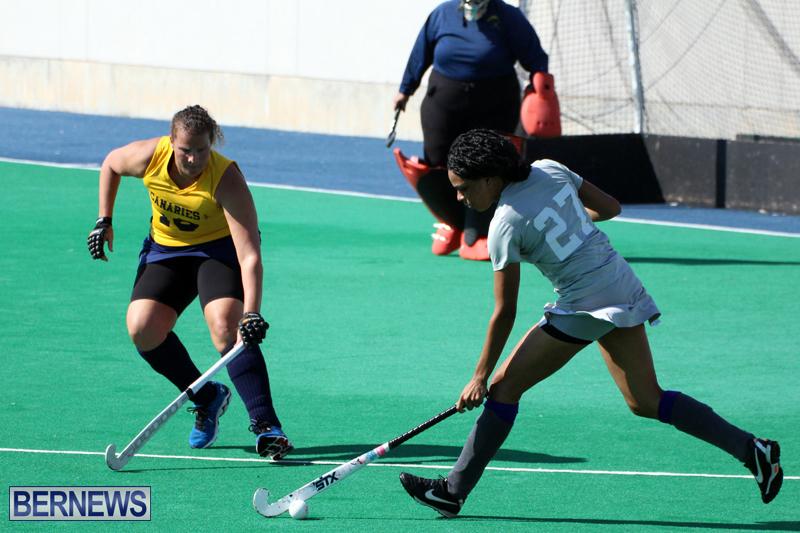 Budgies-Canaries-Hockey-Bermuda-November-2015-3