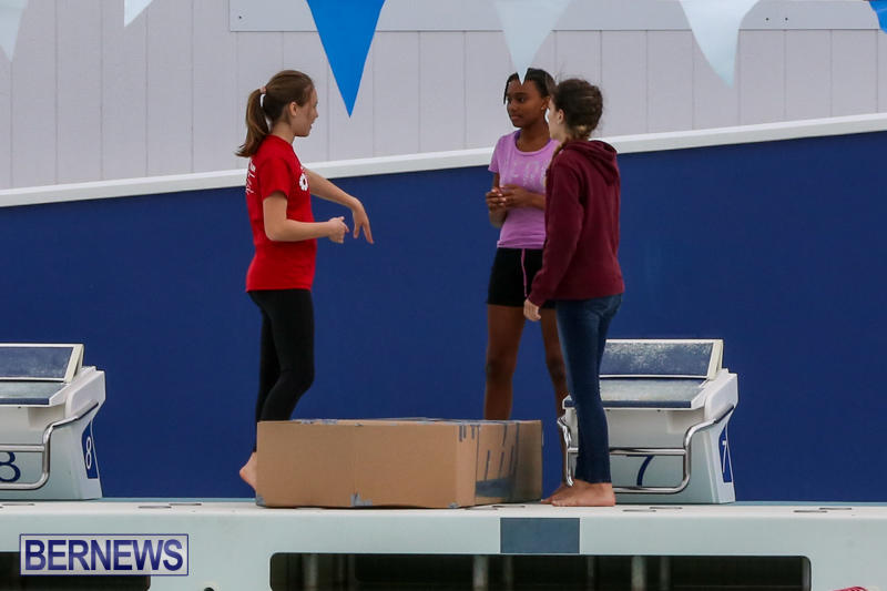 Cardboard-Boat-Challenge-Bermuda-November-19-2015-42
