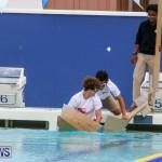 Cardboard Boat Challenge Bermuda, November 19 2015-73