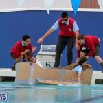 Cardboard Boat Challenge Bermuda, November 19 2015-92