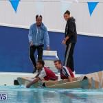 Cardboard Boat Challenge Bermuda, November 19 2015-93