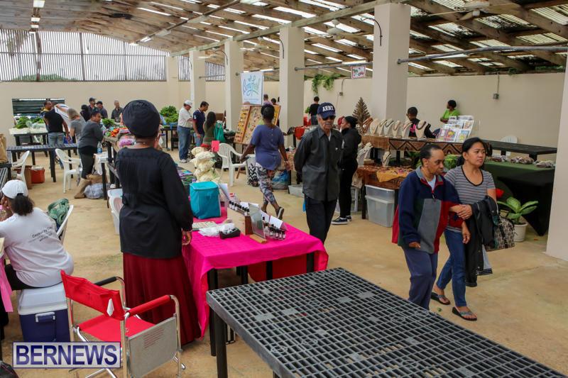 Farmers-Market-Bermuda-November-28-2015-1