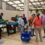 Farmers Market Bermuda, November 28 2015-43