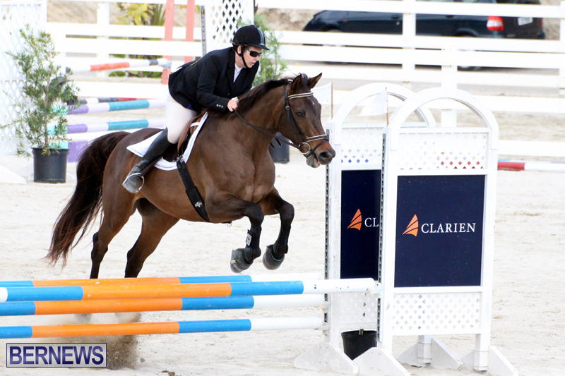 Horse-Show-Bermuda-Nov-26-2015-10
