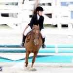 Horse Show Bermuda Nov 26 2015 (12)
