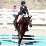 Horse Show Bermuda Nov 26 2015 (13)