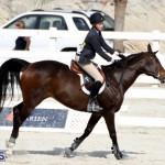 Horse Show Bermuda Nov 26 2015 (14)