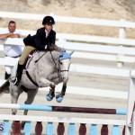 Horse Show Bermuda Nov 26 2015 (18)
