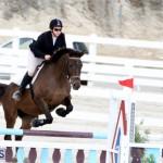 Horse Show Bermuda Nov 26 2015 (9)