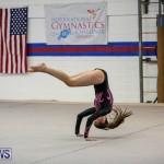 International Gymnastics Challenge Bermuda, November 14 2015-10