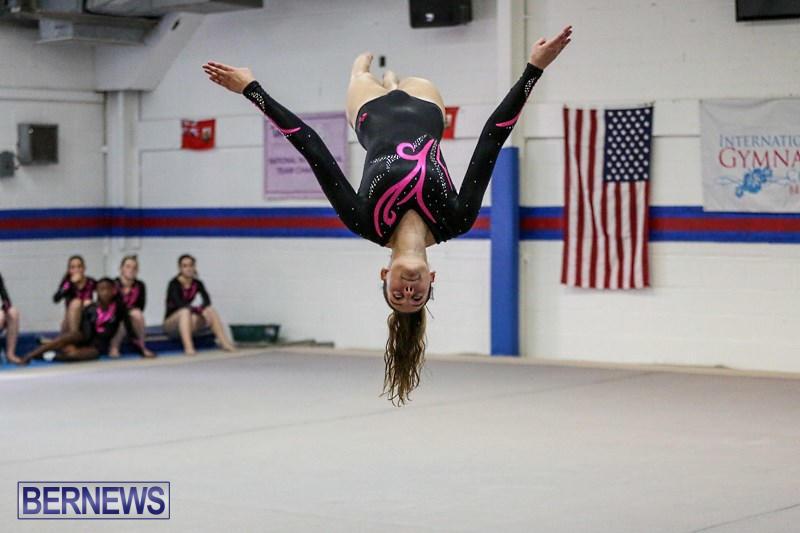 International-Gymnastics-Challenge-Bermuda-November-14-2015-13