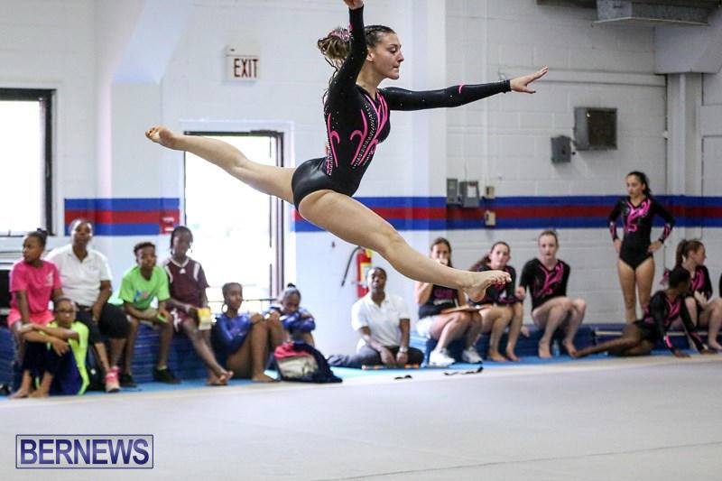 International-Gymnastics-Challenge-Bermuda-November-14-2015-15