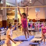 International Gymnastics Challenge Bermuda, November 14 2015-16