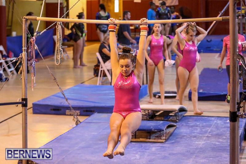 International-Gymnastics-Challenge-Bermuda-November-14-2015-18