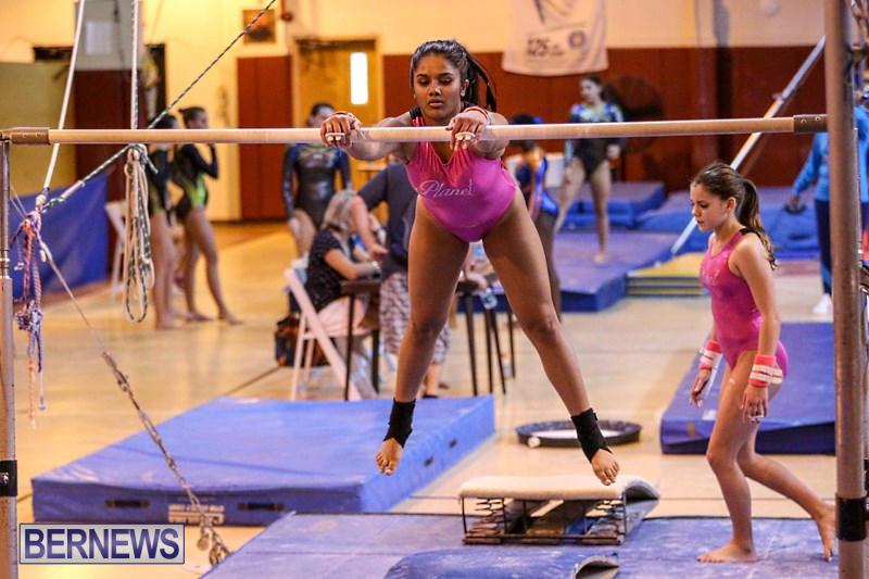 International-Gymnastics-Challenge-Bermuda-November-14-2015-20