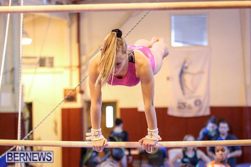 International-Gymnastics-Challenge-Bermuda-November-14-2015-27