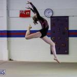 International Gymnastics Challenge Bermuda, November 14 2015-3