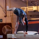 International Gymnastics Challenge Bermuda, November 14 2015-32