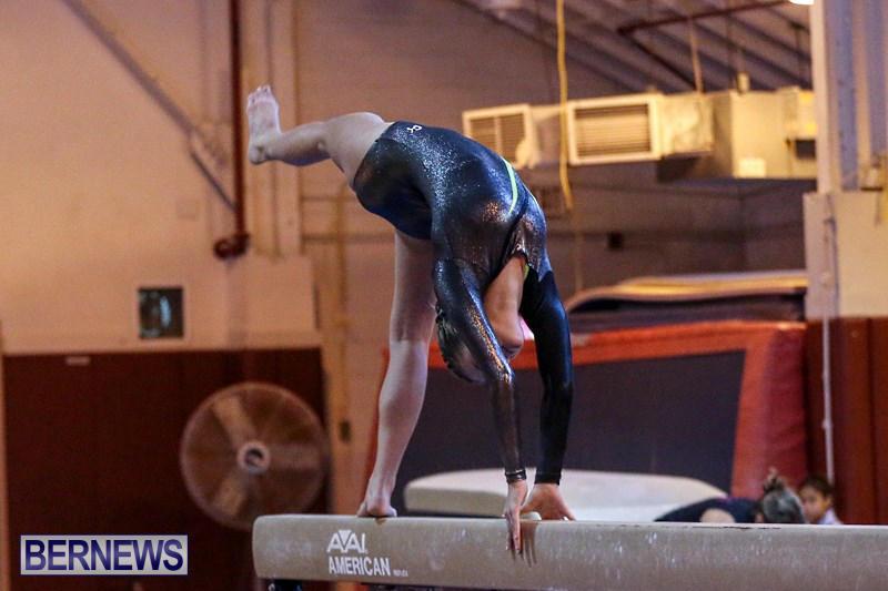 International-Gymnastics-Challenge-Bermuda-November-14-2015-32