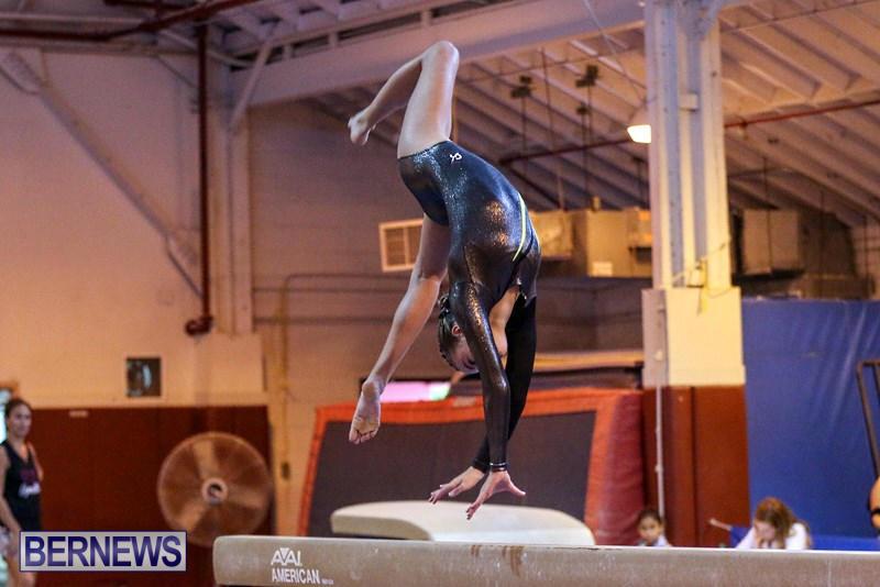 International-Gymnastics-Challenge-Bermuda-November-14-2015-35