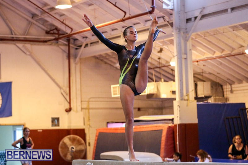 International-Gymnastics-Challenge-Bermuda-November-14-2015-37