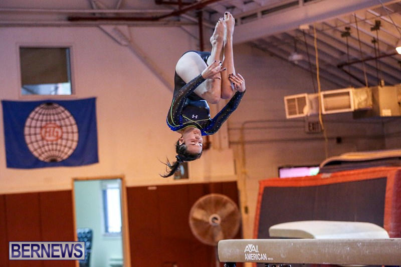 International-Gymnastics-Challenge-Bermuda-November-14-2015-42