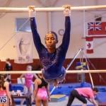 International Gymnastics Challenge Bermuda, November 14 2015-44