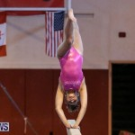 International Gymnastics Challenge Bermuda, November 14 2015-47