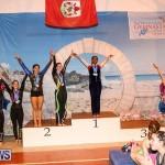 International Gymnastics Challenge Bermuda, November 14 2015-58