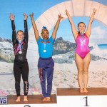 International Gymnastics Challenge Bermuda, November 14 2015-60