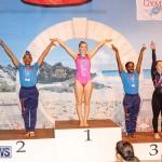International Gymnastics Challenge Bermuda, November 14 2015-62