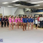 International Gymnastics Challenge Bermuda, November 14 2015-68