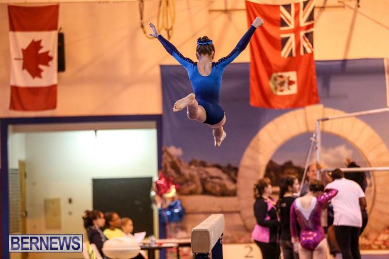 International-Gymnastics-Challenge-Bermuda-November-14-2015-76