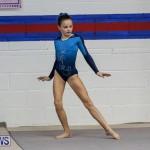 International Gymnastics Challenge Bermuda, November 14 2015-80