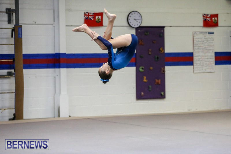 International-Gymnastics-Challenge-Bermuda-November-14-2015-81